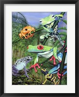 Framed Tree Frogs