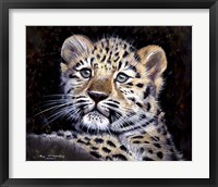 Framed Amur Leopard Cub