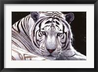 Framed White King