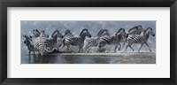 Framed Flight Of The Zebras