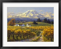 Framed Autumn Vineyards