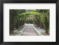 Framed Archway & Path, Nasville, Tennessee 10