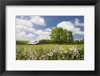 Framed Flowers & Farm, Holmes County, Ohio 10