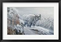 Framed Winter's Fury Mountain Goat