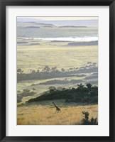 Framed Morning On The Mara