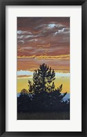Framed Evening Pine