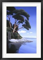 Framed Arbutus Cove