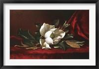 Framed Magnolia Flower
