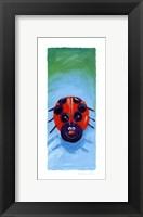 Framed Bugs IV