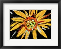 Framed Sunflower