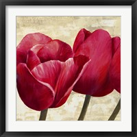 Framed Red Tulips (Detail)