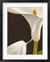 Calla Moderna I Framed Print