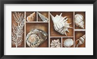 Framed Memories of the Ocean