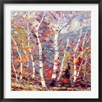 Framed Birch Colors 2