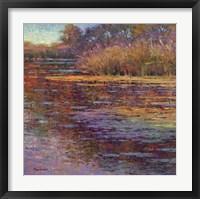 Framed Sunlit Pond 1