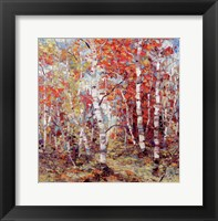 Framed Birch Colors 3