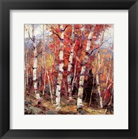 Framed Birch Colors 4