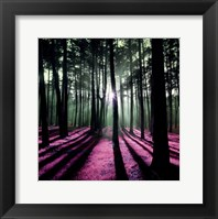 Framed Technicolor Trees I