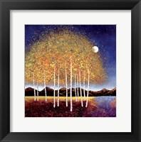 Framed Evening Stream