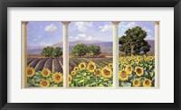 Framed Finestra sui Girasoli