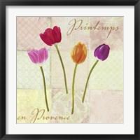 Framed Printemps en Provence