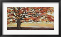 Framed Red Oak