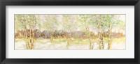 Bosco di Betulle I Framed Print