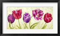Framed Tulipani Danzanti