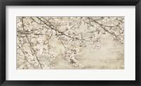 Framed Ciliegio in Fiore