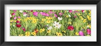 Framed Field of Flowers (Detail)