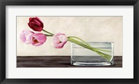 Framed Modern Composition, Tulips