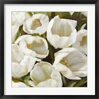 Framed Bianco I