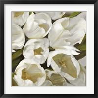 Framed Bianco II