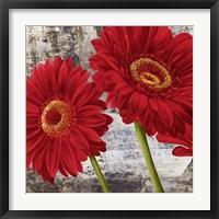 Framed Red Gerberas I