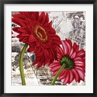 Framed Red Gerberas III