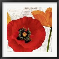 Framed Summer Poppies III