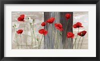 Framed Country Poppies