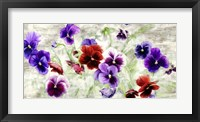 Framed Field of Pansies