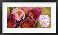 Framed My Tulips