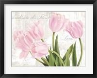 Framed Academie des Fleurs