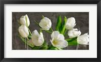 Framed Tulip Blackboard
