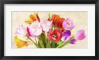 Framed Tulips in Spring