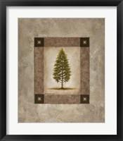 Framed European Pine I