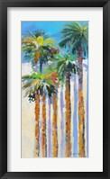 Framed Shadow Palms II