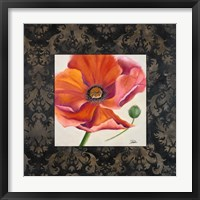 Poppy Flower II Framed Print