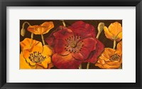 Framed Dazzling Poppies I (black background)
