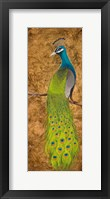 Framed Peacocks I