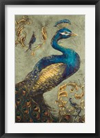 Framed Peacock on Sage I