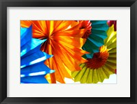 Framed Paper Flowers