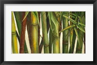 Framed Bamboo on Beige I